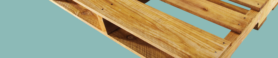 New Wood Pallet Manufacturer, Facility